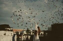 PAROTISE BIRDS